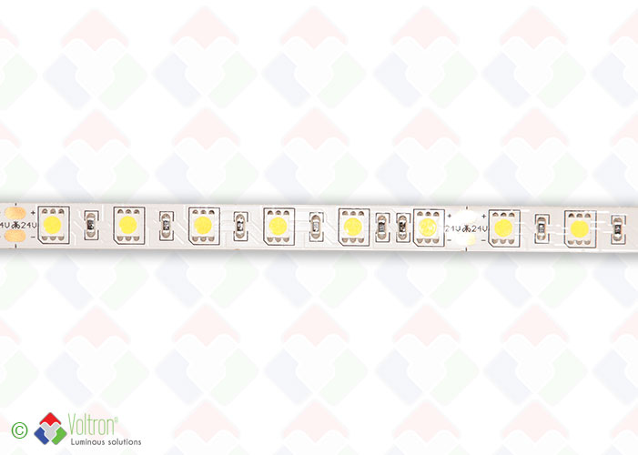 Ruban led : 60 led par mètre SMD5050 - PREMIUM VERSION/PV-5050-60-DW-20-24V by Voltron Lighting Group